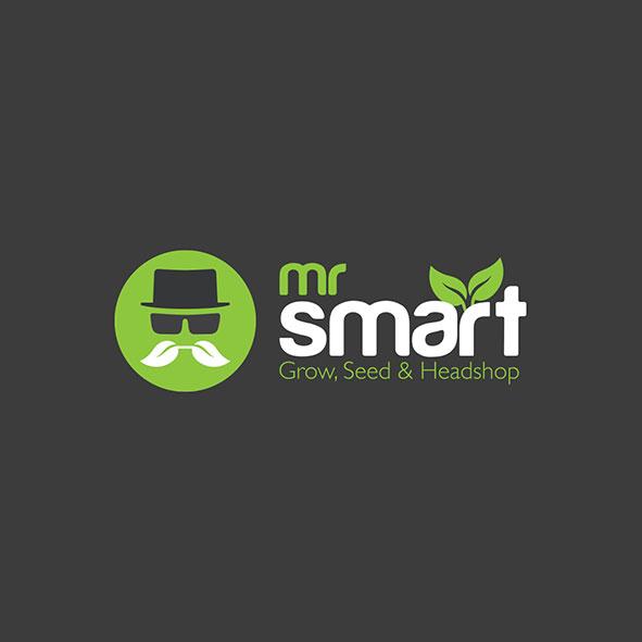 Mr. Smart